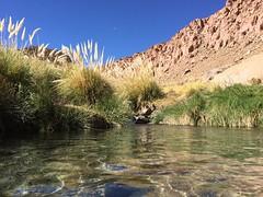 - 2016-05-12 at 15-15-37 + hot water springs