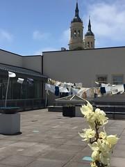 IMG_3065 (Thacher Gallery at the University of San Francisco) Tags: contemporaryart artinstallation environmentalart usfca sculptureterrace thachergallery worldsinthemaking christinaconklin