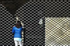 fuori orario (pamo67) Tags: shop closed pattern shadows blu ombre negozio shutter theme plot wiremesh overtime trama motivo serranda intreccio retemetallica dispalle shouders pamo67 pasqualemozzillo