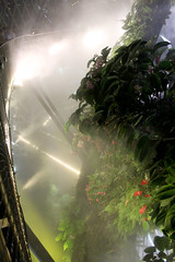 Cloud Forest 3 (Jimmy Colburn) Tags: cloud mist fog gardens by forest bay singapore