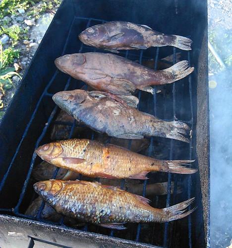 Копченная Рыба