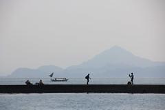2 (Yorozuna / ) Tags: sea silhouette japan island boat seaside fishing fisherman ship photographer seawall hiroshima   breakwater takehara  angler  angling                 tadanoumi       seaembankment  tideembankment tadanoumiport coastlevee
