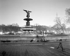 Fountain (CharliePVA) Tags: park camera new york city winter light people white black mamiya film fountain angel night digital photography long exposure rich central scan hours fading streaks range tonal rb67