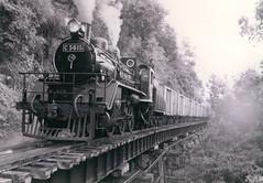 Thailand - Burma Railway Kra Sae trestle (railasia) Tags: trestle thailand infra reproduction kanchanaburi srt krasae burmarailway wangpho c56 metergauge steamlocogoodstrain