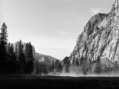 Foggy meadow (GerryL) Tags: california kodaktrix yosemitenationalpark hasselblad500cm gerryl carlzeiss80mmplanarf28