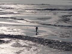 Warns (hoekiepoekie) Tags: wintertime ijsselmeerkust