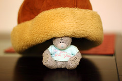Winter hat (KaterRina) Tags: bear hat toy 50mm14 cannon winterhat oneobject365daysproject pukatukas