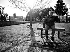 yokohama (Takeshi GS) Tags: park street old light people bw dog pet white black tree monochrome japan photography  resting  x10 fujfilm