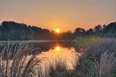 Sunrise 120329 (taduque) Tags: morning sky sun sunrise landscape dawn twilight northcarolina raleigh sunup daybreak morningsky firstlight tadsunrise sunrisedaily lonniepoolegc
