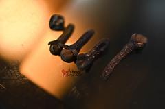 اللــه (Fatimah Alzwyed .. Instagram:fatimahalzwyed) Tags: nikon flickr 7000 فلكر اصفر ماكرو نيكون دي فلفل بصمة عزل ميكرو d7000 أنين pasmat