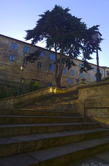 Pontevedra (Luis Diaz Devesa) Tags: espaa tree spain farola galicia galiza rbol pontevedra escaleras luisdiazdevesa
