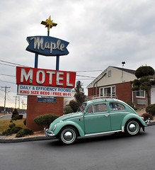 Maple Motel neon sign and '63 VW Beetle (63vwdriver) Tags: berlin sign vw bug volkswagen us maple neon 5 connecticut beetle ct motel 15 route turnpike newington 1963