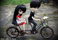 Double bike ride (pure_embers) Tags: birthday uk boy black cute girl bike rose tattoo vintage dark couple doll dolls eyelashes ride sebastian gothic teacher mina wig modified romantic pullip tandem pure tae pinup embers tutor obitsu ddalgi imriel taeyang leekeworld