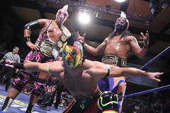 IMG_9218 (Black Terry Jr) Tags: park wrestling perros tijuana juniors wagner lucha libre aaa angelico mascaras traumas iwrg