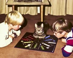 A rescued image - sort of. (Romair) Tags: cat rogerjohnson topazadjust sliderssunday kidsplayinggame