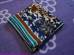 193TC_Scarves_Dreams_(21)_Mar13,2014_2560x1920_3130226_sizedFlickR (terence14141414) Tags: scarf silk gag foulard soie gagging esarp scarfdreams
