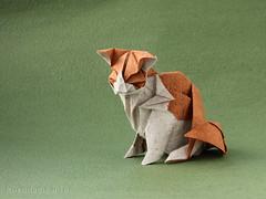 Cat by Katsuta Kyohei (ronatka) Tags: cat origami katsutakyohei origamishopcom duothaipaper