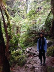 lorne 360 (raqib) Tags: holiday nature water trekking trek waterfall hiking victoria hike falls bushwalking vegetation rc lorne iphone erskine erskinefalls waterfallaustralia