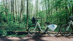 05.05.2016 (Fregoli Cotard) Tags: bike bicycle forest engagement funday malta adventure explore celebrate dailyphoto photodiary poznan photojournal nameday 366 dailyjournal dailyphotograph everydayphotography everydayphoto 366days aphotoeveryday 126366 366project 366daily 126of366 everydayjournal 366dailyproject photographicaljournal