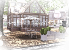 Cosmopolitan is looking for Bloggers (Corina Wonder (Cosmopolitan Events)) Tags: hello cosmopolitan events application sl secondlife bloggers tuesday