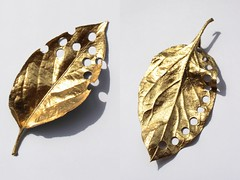 Perforated gold leaves (chloejadeyoung) Tags: camera light sunlight detail green art nature leaves canon project photography gold design leaf 3d still student natural personal decay mixedmedia contemporary circles tripod experiment manipulation holes course change spraypaint fragile development unexpected coursework ephemeral materials perforation part3 transient impermanent subtract artfoundation 700d