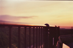 Sunset Reflection by Tom Ashworth (filmitechture) Tags: sunset downs bristol lomography expiredfilm truprint