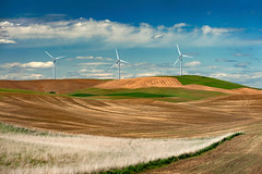 Palouse Wind Farm (EdBob) Tags: palouse wind turbines electricity power windpower blades fields agriculture generation plowed energy transmission farmland farming farm industry industrial washington washingtonstate easternwashington environment environmental agricultural field colorful hillside hills edmundlowephotography edmundlowe spring springtime allmyphotographsare©copyrightedandallrightsreservednoneofthesephotosmaybereproducedandorusedinanyformofpublicationprintortheinternetwithoutmywrittenpermission wwwedmundlowephotocom