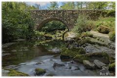 Parnell's Bridge (D.k.o.w) Tags: mountains newcastle steppingstones forestpark mournemountains tollymore tollymoreforest slievedonard shimnariver foleysbridge parnellsbridge