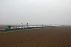 PSA train @ Sand (Wesley van Drongelen) Tags: train sand zug prima bb fret socit trein fer sncf nationale societe westhouse chemins 37000 bb37000 437000