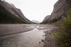 Jasper-Banff (Zac Staffiere) Tags: rockies jasper hiking roadtrip alberta banff peyto