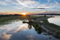Sunset at Mettnau (Sebo23) Tags: sonnenstrahlen sonnenuntergang sunset sunrays reflections reflektionen mettnau radolfzell nature landscape landschaft canon6d canon24704l