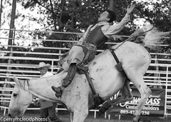 Blythewood Rodeo 2016-72 (Perry B McLeod) Tags: sc cowboys barrel bull racing bulls riding rodeo cowgirl calf saddle bronc blythewood roping ipra