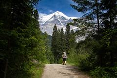 A Great Start (jpmckenna - Tenquille Lake Up Next) Tags: canada hiking mountrobson mountrobsonprovincialpark canadianrockies mtrobson bcparks hikingbritishcolumbia berglakebackpack getoutisde