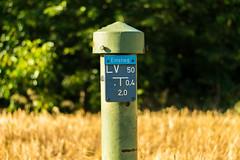 knstlicher Pilz (JBsLightAndShadow) Tags: summer field sunshine sign nikon sommer feld felder sunny schild fields heidelberg sonnig sonnenschein versorgung nikond3300 d3300