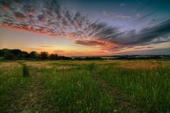 Sunset (Crisp-13) Tags: sunset sky cloud sun green field grass set angle wide hdr
