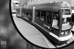 Otherworld Transport (Ian Sane) Tags: street white black max reflection mill oregon train portland ian photography mirror university downtown state transport images transportation montgomery mass avenue trimet 5th otherworld sane