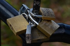 love-locked (freef0cus) Tags: wedding love locks ritual tradition locked wollongong lovelocked tieingthelock