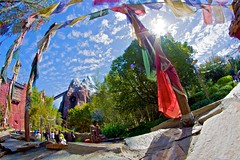 Animal Kingdom: Expedition Everest (Hamilton!) Tags: world china travel nepal vacation mountain lake expedition animal fun aper
