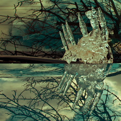 Windshield Art (Boreal Bird) Tags: hss windshieldart sliderssunday lakesuperioronmywindshield kindoflookslikeacrab