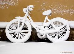 della serie GELATERIE URBANE ... n.1 (Maria Grazia Marrulli) Tags: dellaseriegelaterieurbane veicoli biciclette vélo bicycle sottoiportici strade street routes roads bianco white blanc neve snow nieve niege inverno winter hiver invierno reminiscenze canonixus870is paoloconte velocitàsilenziosa jazz rimini romagna emiliaromagna italia allegrisinasceosidiventa imieiluoghi