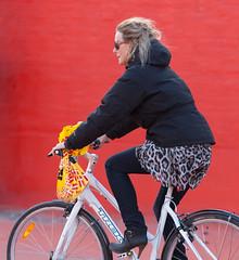 Copenhagen Bikehaven by Mellbin - Bike Cycle Bicycle - 2012 - 5329 (Franz-Michael S. Mellbin) Tags: street people fashion bike bicycle copenhagen fur denmark cycling cyclist skin bicicleta cycle biking bici 自行车 velo fahrrad bicicletas vélo sykkel fiets rower cykel 自転車 accessorize copenhague サイクリング デンマーク サイクル мода велосипед 哥本哈根 コペンハーゲン 脚踏车 biciclettes 丹麦 cyclechic cycleculture الدراجة дания копенгаген copenhagencyclechic 骑自行车 copenhagenize bikehaven copenhagenbikehaven velofashion copenhagencycleculture 的自行车