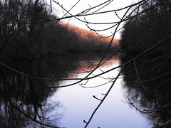 And as I put my words away, the flow slows (Tolly0524) Tags: morning pink winter reflection water river landscape still stream alone connecticut branches violet newengland calm clear tranquil farmingtonriver pinktrees