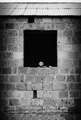 peekaboo (c_c_clason) Tags: leica boy blackandwhite window 35mm armenia m8 schwarzweiss carlzeiss biogon aparan