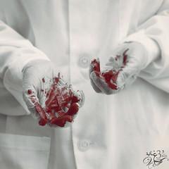 *٤ ( غ ــآلـيـۃ) Tags: