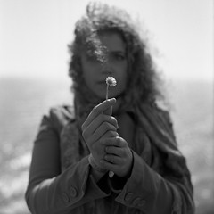 Daisy, Alice, Dawlish. (Matt Benton) Tags: sea blackandwhite 120 girl daisies mediumformat alice daisy ilford fp4 sqa dawlish 150mm bronicasqa alicethewhale bronicazenzanons150mmf35