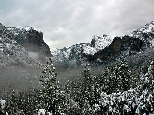 Curtis Kautzer's Yosemite