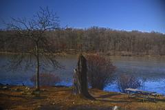 Stump (JeffOates) Tags: park blue trees sky blackandwhite nature water river rocks peace stump