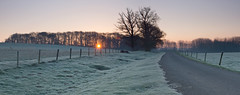 Frosty Sunrise (icimages76) Tags: morning sun sunrise frost fawsley