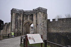 Fortification de Provins 77 France (46) (hube.marc) Tags: france nikon europe village fort age jolie fortification chateau mur 77 defense beau d500 provins moyen 1733