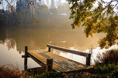 Autumn Mist (Digikuvaaja) Tags: park wood old morning autumn trees light mist lake plant reflection tree green fall nature water beautiful leaves weather yellow fog rural season landscape gold pier wooden still dock pond scenery colorful solitude mood view natural outdoor foggy scenic peaceful nobody scene calm beam foliage clear shore silence environment remote serene solitary tranquil tranquilscene